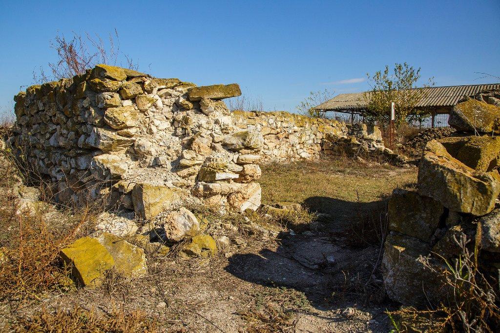 New Egreta - Dunavatu De Jos - Murighiol